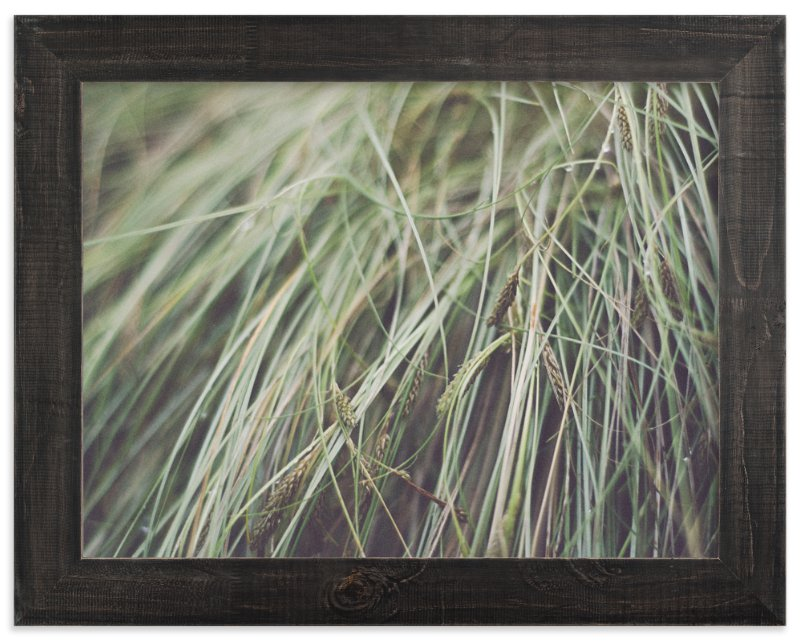 """GRASS"" - Art Print by Stacy Cooke in beautiful frame options and a variety of sizes."