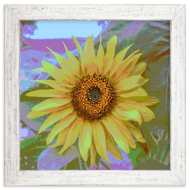 """sunFLOWER"" - Art Print by Gail Schechter in beautiful frame options and a variety of sizes."
