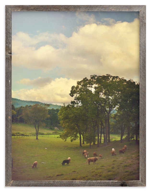 """Lazy Grazing"" - Art Print by Smile Peace Love in beautiful frame options and a variety of sizes."