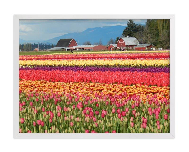 """Classic Tulip Town"" - Art Print by Jan Kessel in beautiful frame options and a variety of sizes."