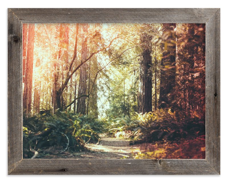 """Redwoods Path"" - Art Print by Elena Kulikova in beautiful frame options and a variety of sizes."