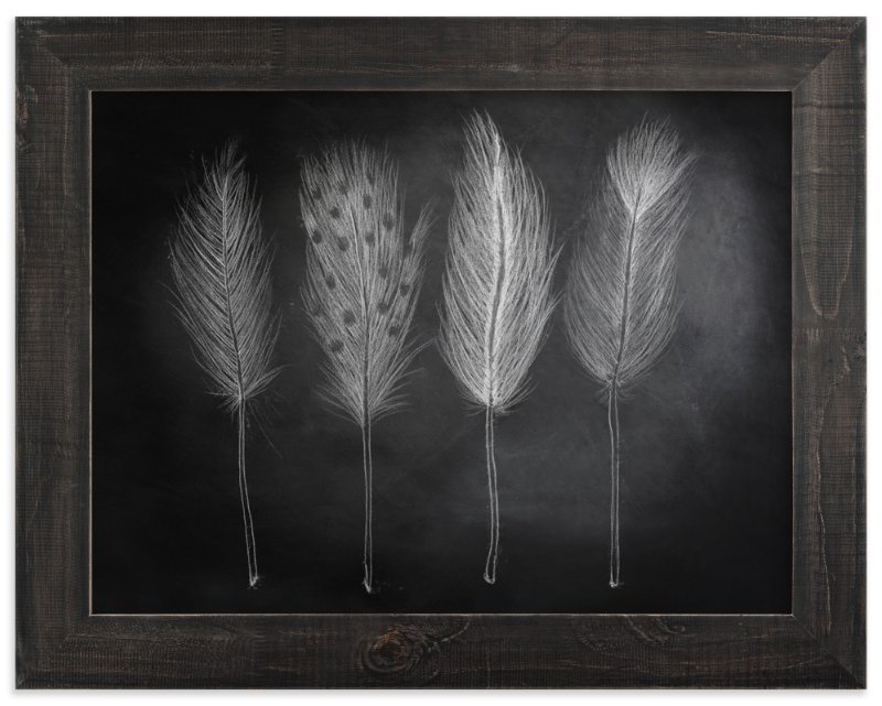 """""""Chalk Feathers"""" - Art Print by Lindsay Hanson in beautiful frame options and a variety of sizes."""