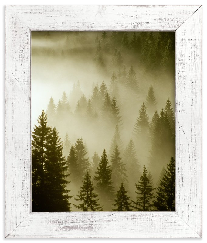 """Mystical Forest "" - Art Print by Uros Zagozen in beautiful frame options and a variety of sizes."