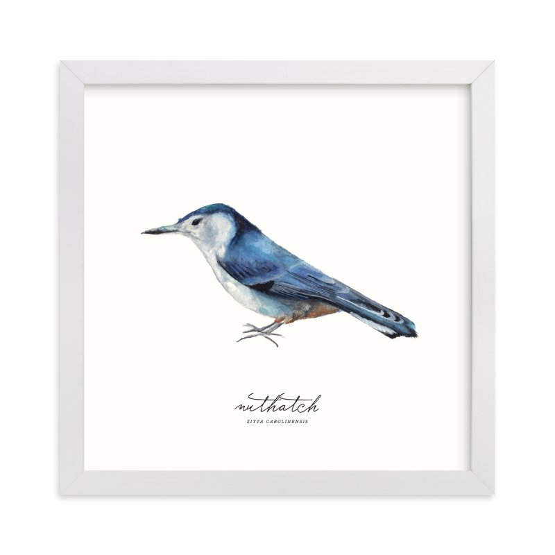 """""""Nuthatch"""" - Art Print by Olivia Kanaley in beautiful frame options and a variety of sizes."""