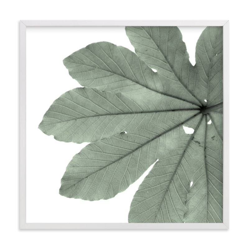 """""""Leaf In Green"""" - Art Print by Jonathan Brooks in beautiful frame options and a variety of sizes."""