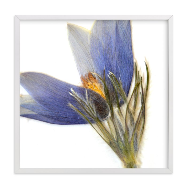 """""""Member 5"""" - Art Print by Shannon in beautiful frame options and a variety of sizes."""