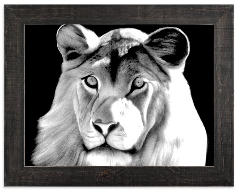 """Lion"" - Art Print by Jerry Winick in beautiful frame options and a variety of sizes."