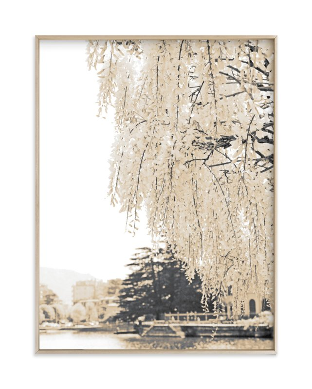 """""""Ivory Blossoms"""" - Art Print by Simi Gauba in beautiful frame options and a variety of sizes."""