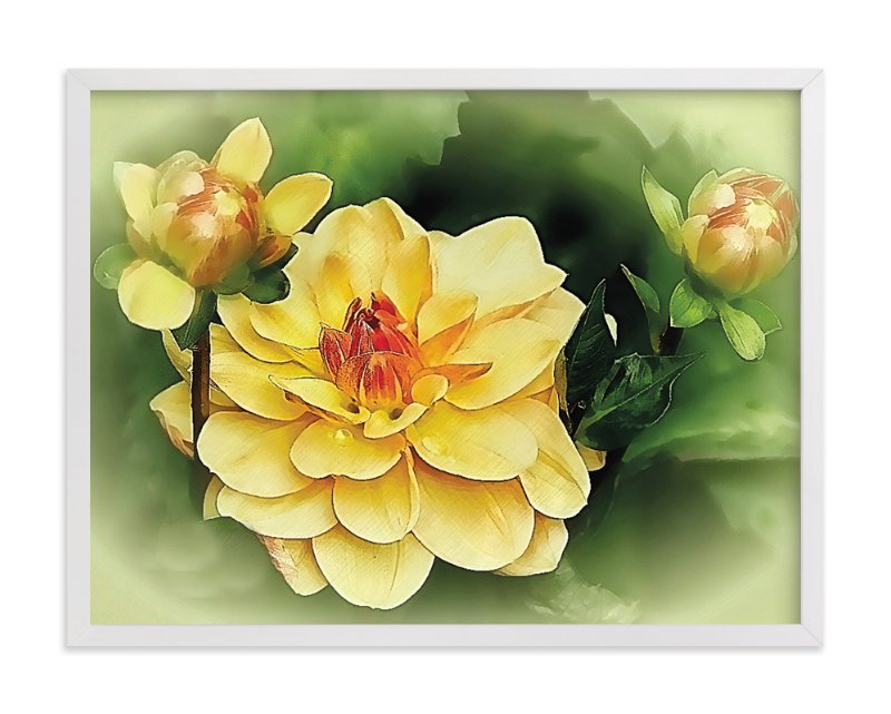 """Focus on the Dahlia"" - Art Print by Mazing Designs in beautiful frame options and a variety of sizes."