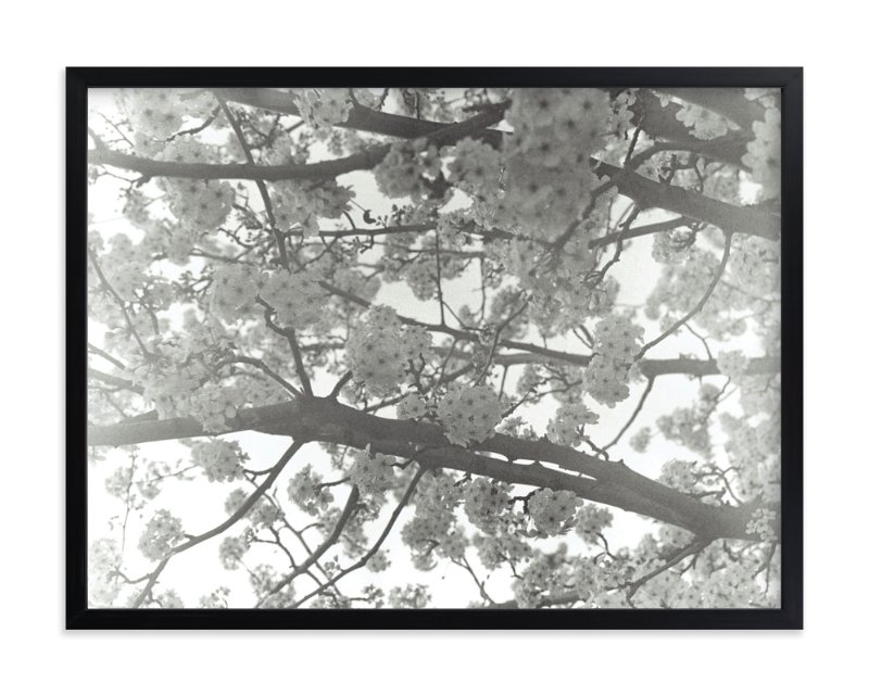 """Remembered Spring"" - Art Print by Jacie Morgan in beautiful frame options and a variety of sizes."