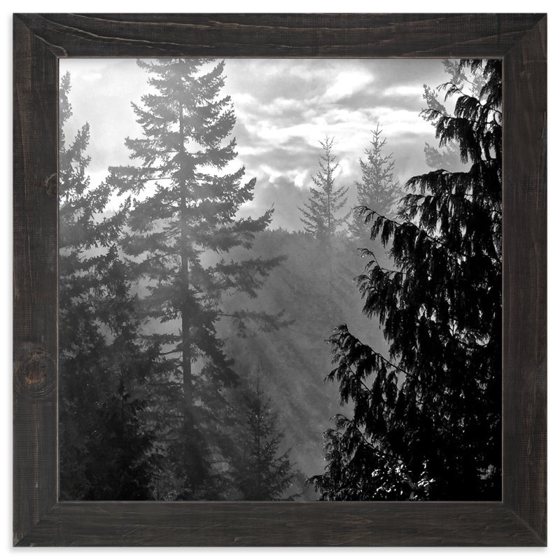 """""""Morning Fog"""" - Art Print by Jan Kessel in beautiful frame options and a variety of sizes."""